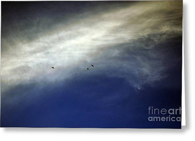 Bruster Greeting Cards - Flight Greeting Card by Clayton Bruster