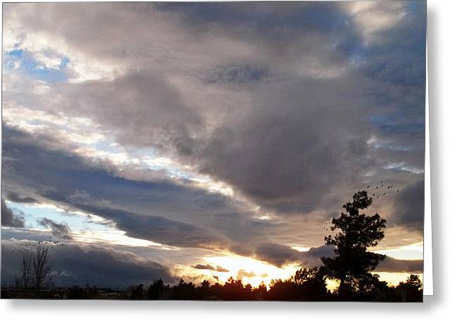 Flight Into Evening Greeting Card by Glenn McCarthy Art and Photography