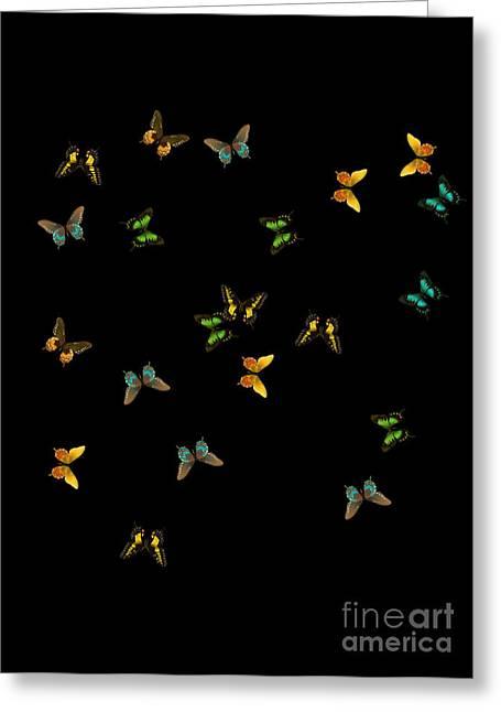 Born Again Digital Greeting Cards - Flight of the Born Again Caterpillars Greeting Card by Iris Salmins