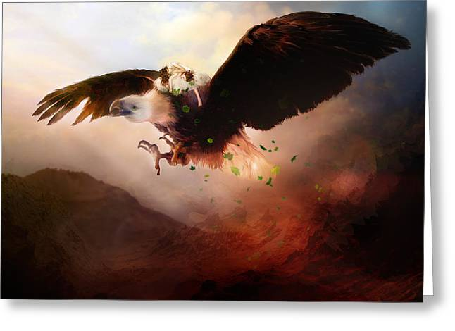 Eagle Feathers Greeting Cards - Flight of the Eagle Greeting Card by Karen K