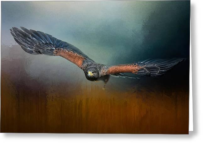 Hawks In Flight Greeting Cards - Flight Of The Harris Hawk Greeting Card by Jai Johnson