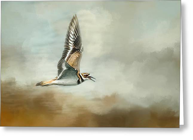 Deer At The Beach Greeting Cards - Flight Of The Killdeer Greeting Card by Jai Johnson