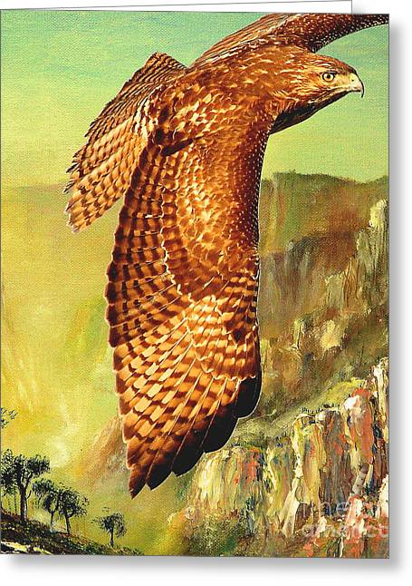 Wingsdomain Mixed Media Greeting Cards - Flight of the Red Tailed Hawk Greeting Card by Wingsdomain Art and Photography