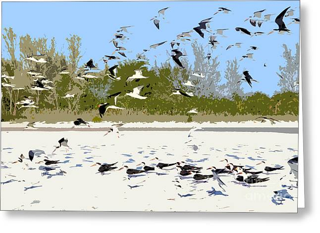 Flying Seagull Greeting Cards - Flock of seagulls Greeting Card by David Lee Thompson