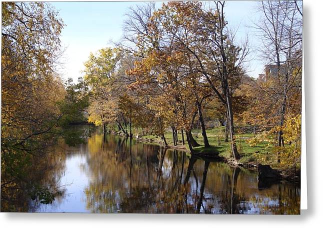 Joseph Yarbrough Greeting Cards - Flood Plain Greeting Card by Joseph Yarbrough