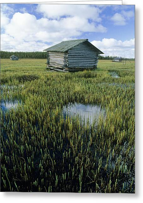 Sauna Greeting Cards - Flooded Meadow With Sauna Hut Greeting Card by Bjorn Svensson