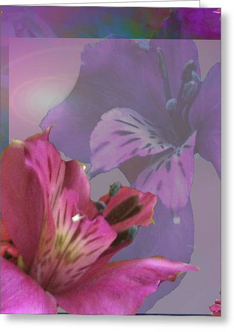 Striking Images Mixed Media Greeting Cards - Floral Dust Greeting Card by Debra     Vatalaro
