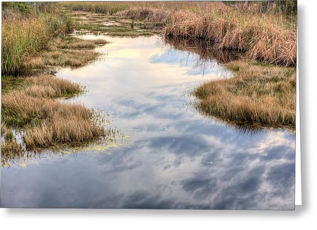 Florida Panhandle Sunset Greeting Cards - Flordia Wetlands Greeting Card by JC Findley