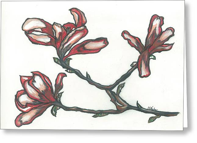 Florence Pastels Greeting Cards - Florences Magnolias Greeting Card by Shelby Kube