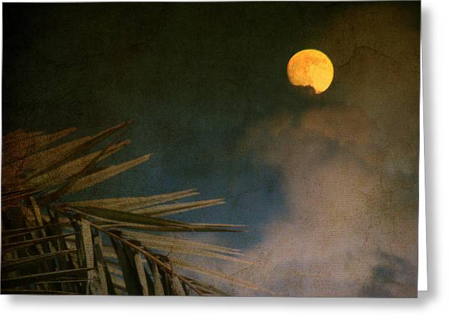 Sky Scape Greeting Cards - Florida Moon Greeting Card by Susanne Van Hulst