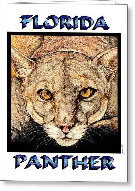 Colour Pencil Greeting Cards - Florida Panther Greeting Card by Sheryl Unwin