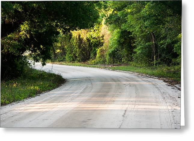Jogging Greeting Cards - Florida Road Greeting Card by Parker Cunningham