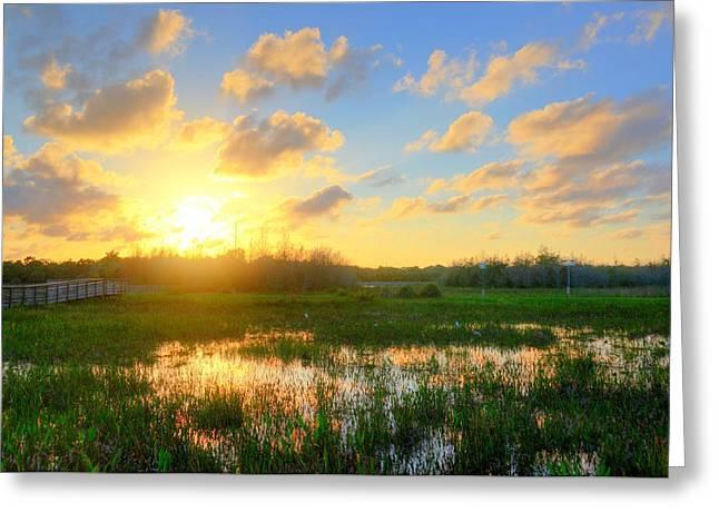 Florida Wetlands Sunset Greeting Card by Allan Einhorn