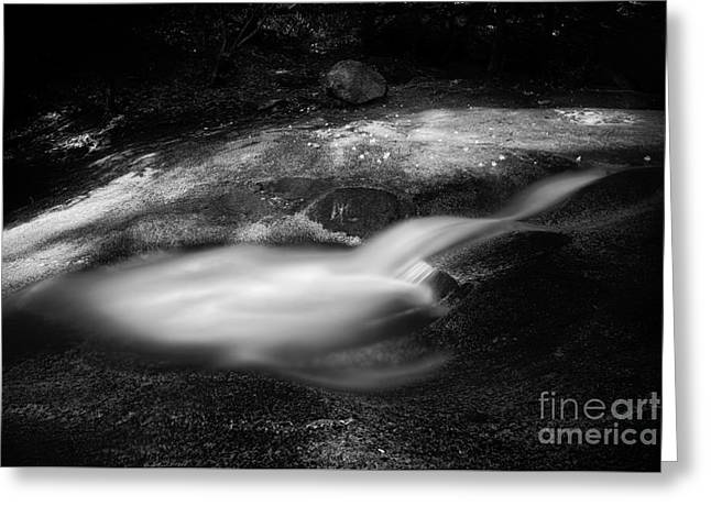 Nc State Greeting Cards - Flow Greeting Card by Patrick M Lynch