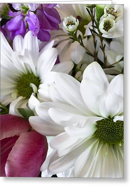 Daisies And Tulips Greeting Card by Andrew Soundarajan