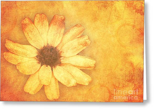 Blumen Greeting Cards - Flower Art Greeting Card by Angela Doelling AD DESIGN Photo and PhotoArt