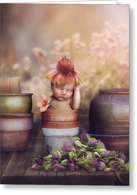 Cindy Grundsten Greeting Cards - Flower baby Greeting Card by Cindy Grundsten