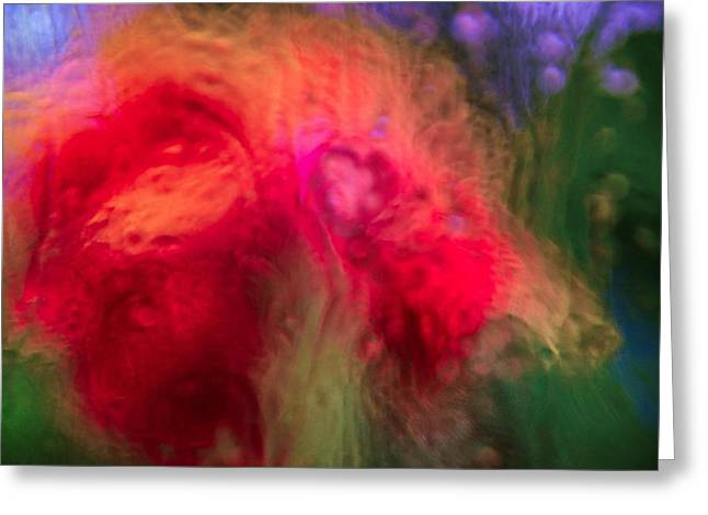 Nature Abstract Greeting Cards - Flower Bomb Greeting Card by Abbie Loyd Kern
