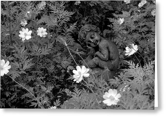 Sit-ins Greeting Cards - Flower Child - Black And White InfraRed Greeting Card by Robert Kinser