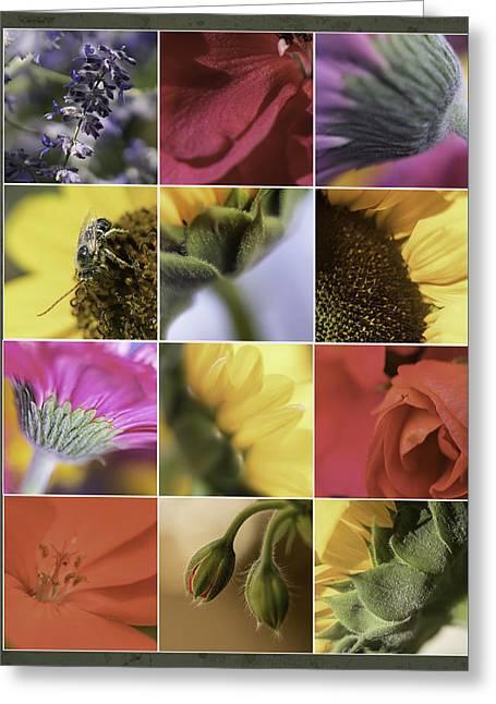 Flower Dozen Greeting Card by Janet Fikar