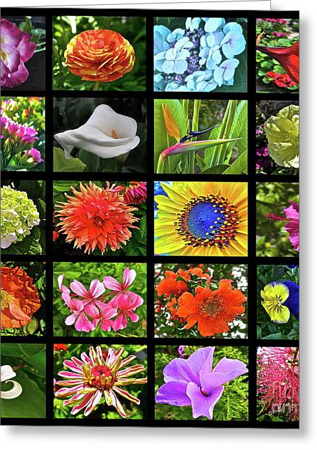 Colorful Quilts Greeting Cards - Flower Favorites Greeting Card by Gwyn Newcombe