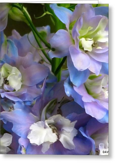 Stimulating Colored Flower Greeting Cards - Flower Frills Greeting Card by Debra     Vatalaro