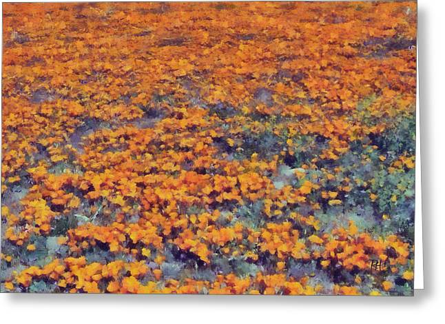 Flower Hill Greeting Card by Russ Harris