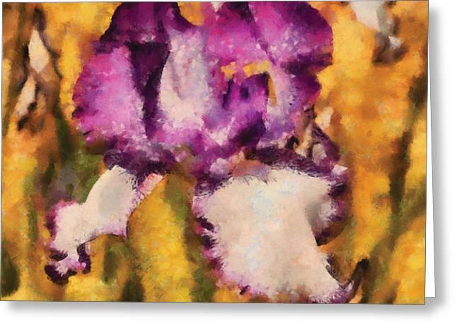 Flower - Iris - Diafragma violeta Greeting Card by Mike Savad