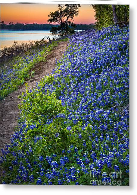 Flower Mound Greeting Card by Inge Johnsson