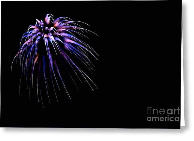 4th July Greeting Cards - Flower No 8 4979 Greeting Card by Ken DePue