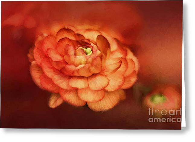 Mother Gift Greeting Cards - Flower on Fire Greeting Card by Darren Fisher