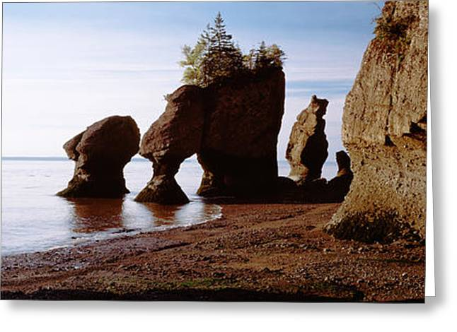 Fir Trees Greeting Cards - Flower Pot Rocks On The Beach, Hopewell Greeting Card by Panoramic Images