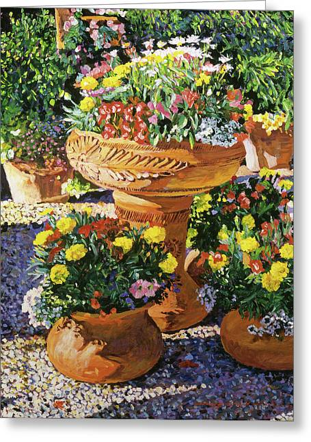 Flower Pots In Sunlight Greeting Card by David Lloyd Glover