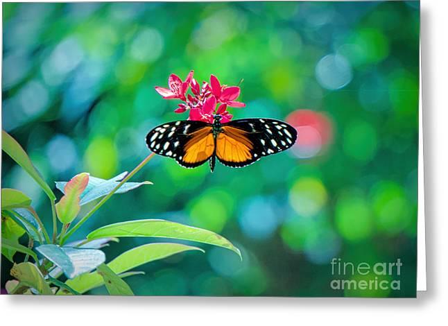 Rhinoceros Greeting Cards - Flower Power Greeting Card by Judy Kay