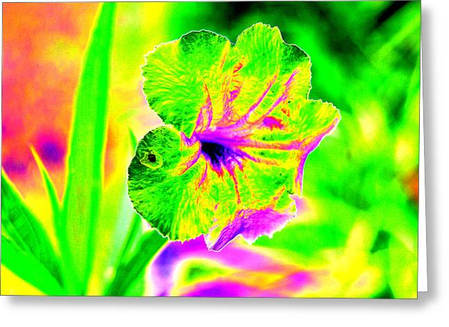 Flower Power Greeting Card by Peter  McIntosh