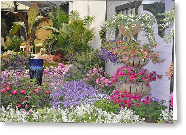 Flower Show Display 2010 Greeting Card by Vijay Sharon Govender