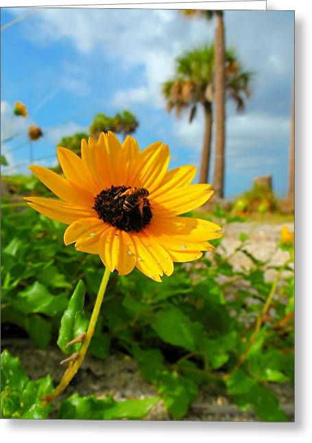 Green Day Greeting Cards - Flower with Bee Greeting Card by Kenneth Byrne
