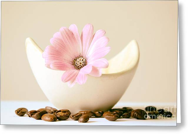 Sunset Abstract Photographs Greeting Cards - Flower with coffee bean Greeting Card by SK Pfphotography