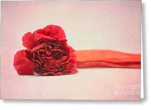 Flower Design Greeting Cards - Flower with ribbon 2 Greeting Card by SK Pfphotography