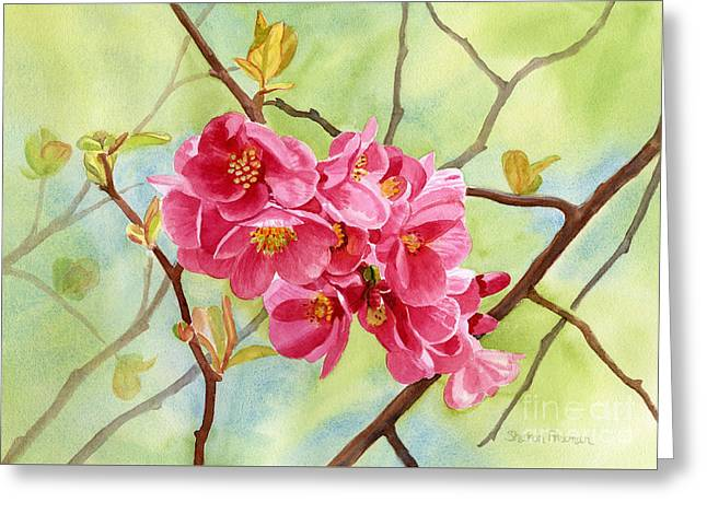 Close Up Paintings Greeting Cards - Flowering Quince with Background Greeting Card by Sharon Freeman