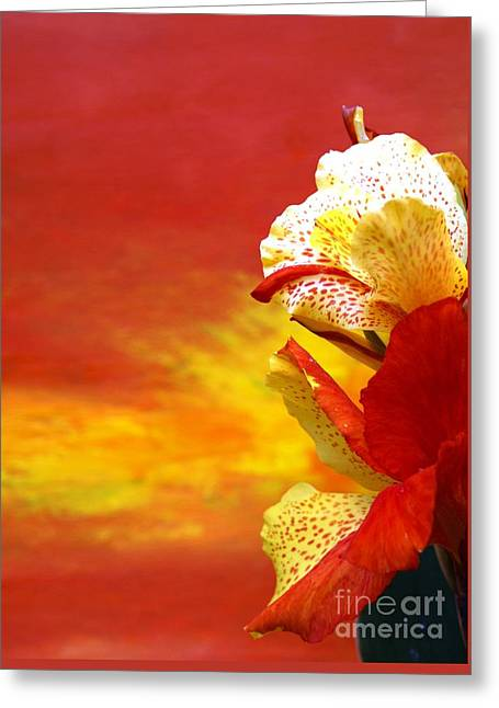 Seasons Greeting Cards - Flowers And Art - Blossom Melt Greeting Card by Geegee W