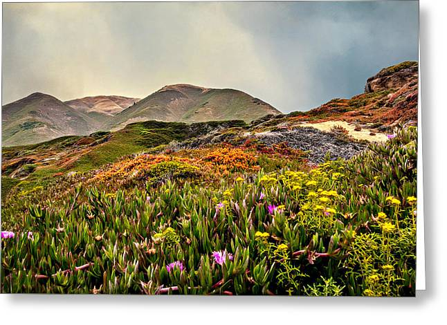 Big Sur Greeting Cards - Flowers Everywhere Greeting Card by Maria Coulson
