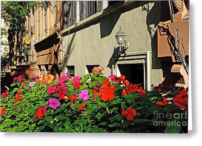 Flowers In New York Greeting Card by Zalman Latzkovich