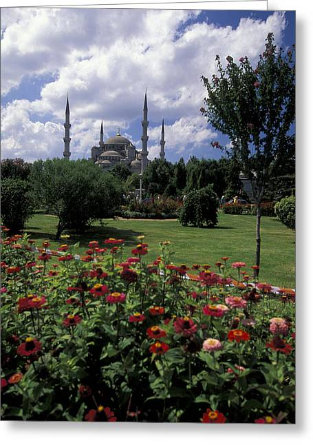 Flowers In Sultanahmet Square Greeting Card by Richard Nowitz