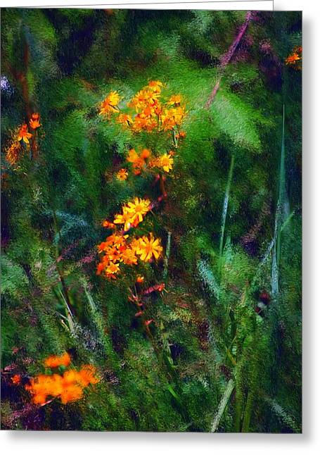 Recently Sold -  - Floral Digital Art Digital Art Greeting Cards - Flowers in the Woods at the Haciendia Greeting Card by David Lane
