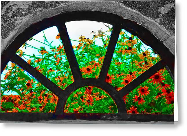 Daiseys Greeting Cards - Flowers Through Basement Window at Monticello Greeting Card by Bill Cannon