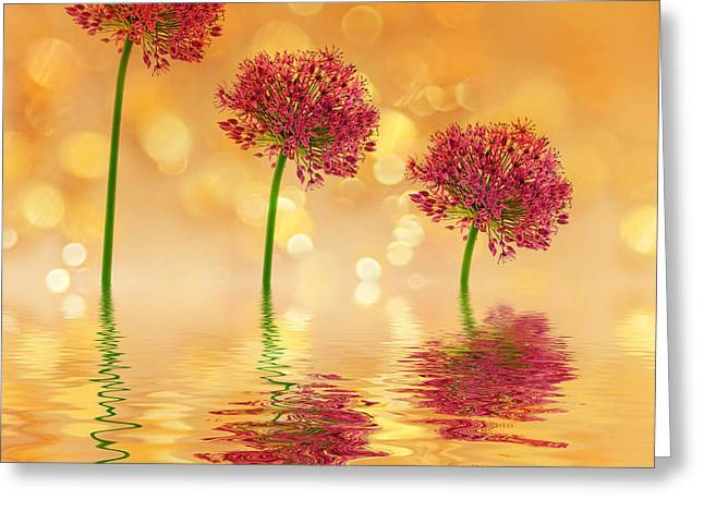 Sunset Abstract Photographs Greeting Cards - Flowers with bokeh Greeting Card by SK Pfphotography