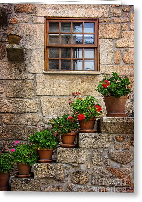 Flowery Decorations Greeting Card by Carlos Caetano