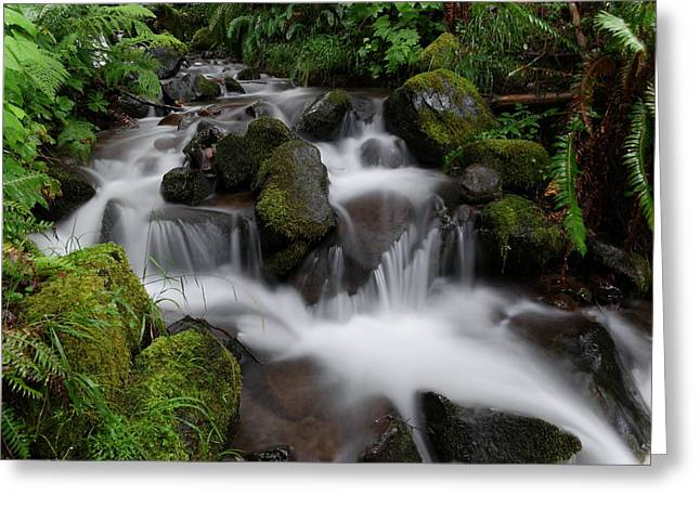 Flowing Beauty In The Green Greeting Card by Jeff Swan