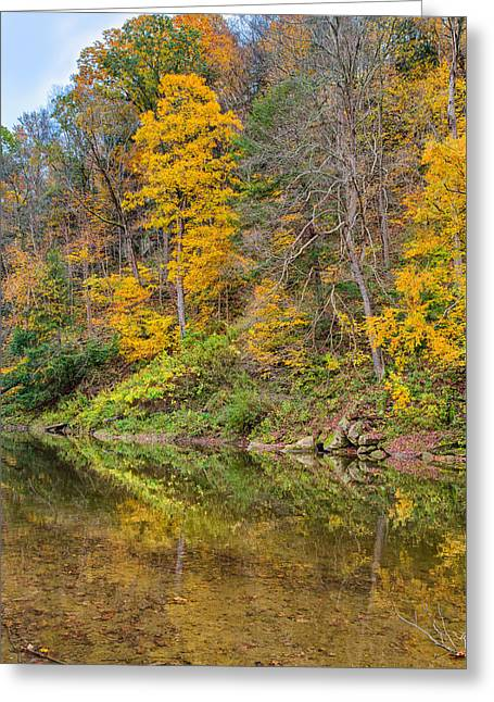 Fishing Creek Greeting Cards - Flowing Colors Greeting Card by John Bailey